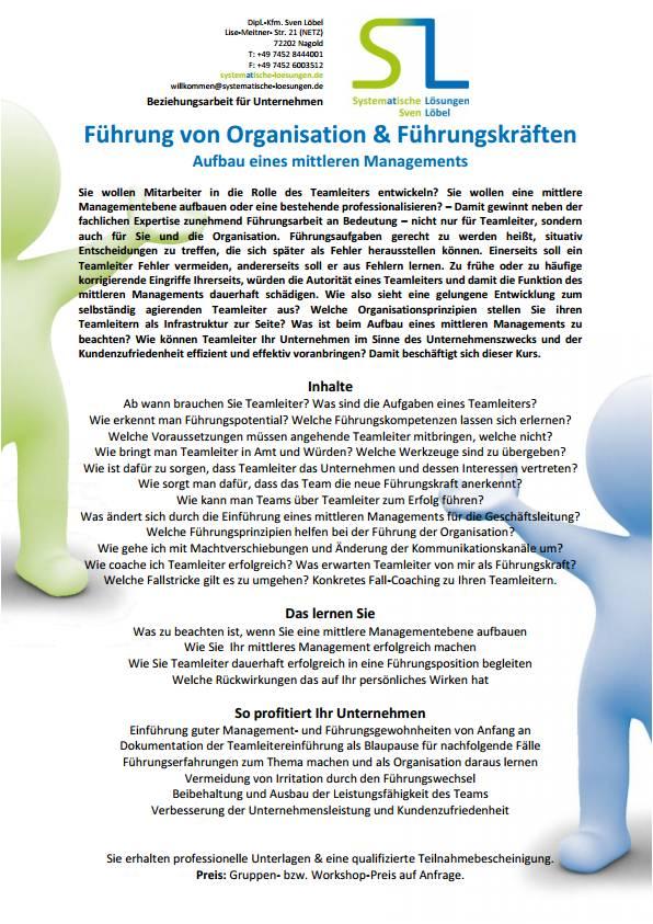 Führung von Organisation & Führungskräften